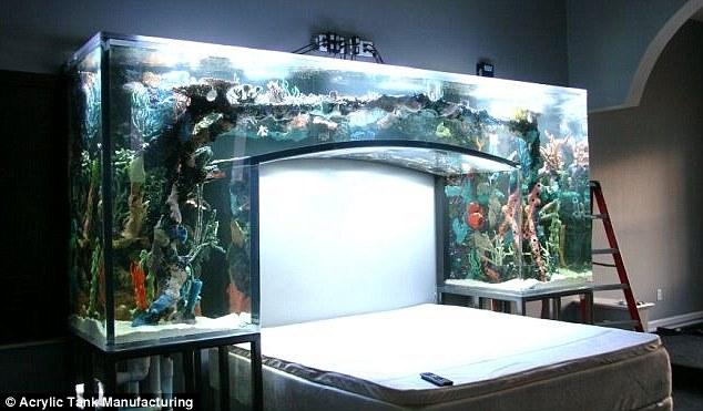 Custom fish tanks rucuss for Custom made fish tanks